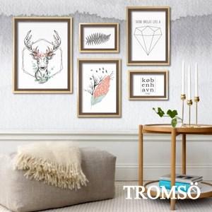 TROMSO風格北歐海報5框相框牆