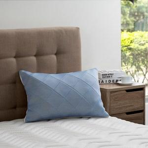 雙效涼感防蟎抗菌記憶枕-藍標準型